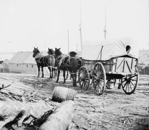 Four-mule-team-and-supply-wagon-at-City-Point-cropped-image